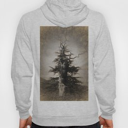 The new and the old in sepia Hoody