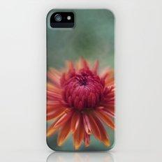 Chrysanthemum Slim Case iPhone (5, 5s)