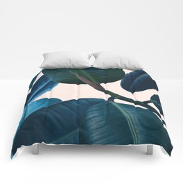 Ficus elastica 2 Comforters