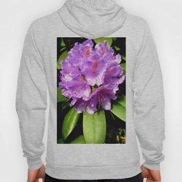 Garden Flower Purple Hoody