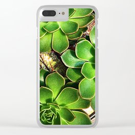 3 Succulents Clear iPhone Case