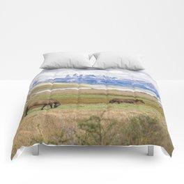 Torres del Paine - Wild Horses Comforters