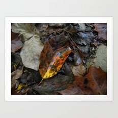 There's a fire in the forest Art Print