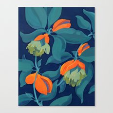 Tropical orange fruit tree Canvas Print