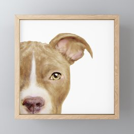 Pitbull light brown Dog illustration original painting print Framed Mini Art Print