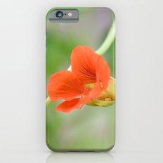 Nasturtium Slim Case iPhone 6s