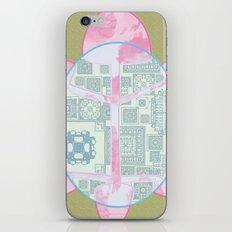 Tortugueando iPhone & iPod Skin