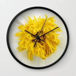 White Krinkled Peony Up Close Wall Clock