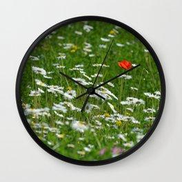 Poppy seed on a meadow Wall Clock