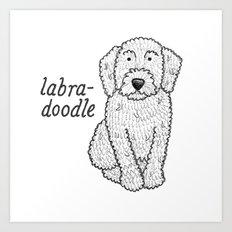 Dog Breeds: Labradoodle Art Print