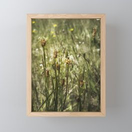 Little Weeds Framed Mini Art Print