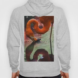 Tropical Flamingo Kiss Hoody