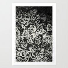 Six Feet Under II Art Print