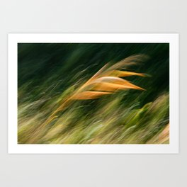 Glowing by the side of the road Art Print