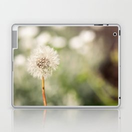 Delicate Dandelion Seedhead Laptop & iPad Skin