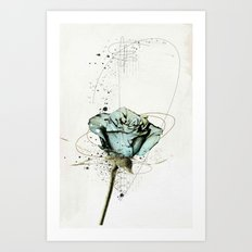 rose2 Art Print