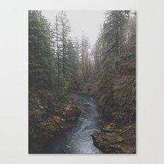Lewis River Canvas Print