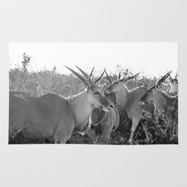 Herd of Eland stand in tall grass in African savanna Rug