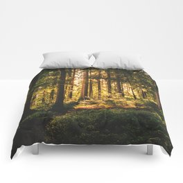 Woods  - Forest, green trees outdoors photography Comforters