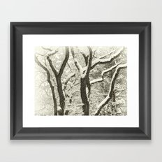 Snowed In Framed Art Print