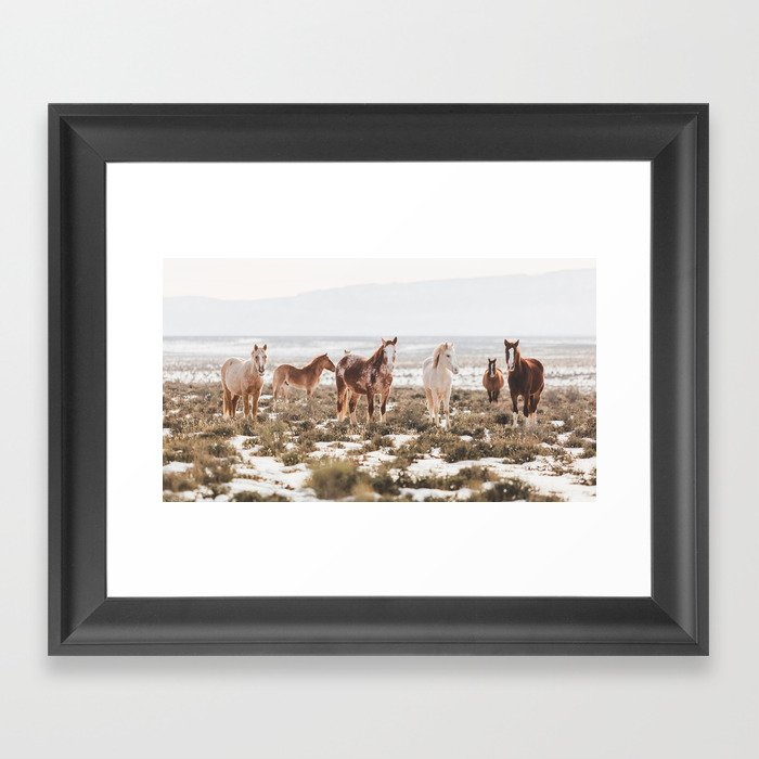 Mustangs of Colorado River Framed Art Print