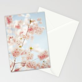 Baby blue and pink Blossoms | Nature flower photography Stationery Cards