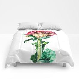 Pink Celosia Comforters