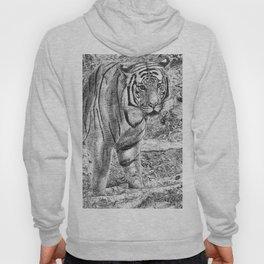 Malayan Tiger (Harimau) Hoody
