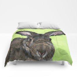 Tango the rescue rabbit Comforters
