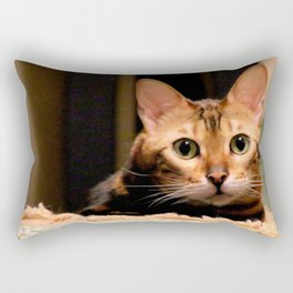 Did You Knock? Rectangular Pillow
