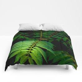 Illuminated Fern Leaf In A Dark Forest Background Comforters