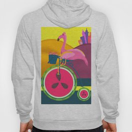 Flamingos Day Out Hoody