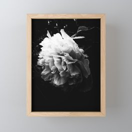 Lush Framed Mini Art Print
