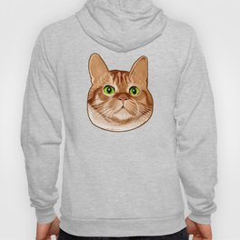 Roswell the Cat Hoody