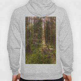 Summer forest Hoody