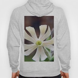 Tiny Flower on Prickly Plant Hoody