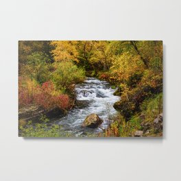 Spearfish Canyon - Creek Surrounded By Fall Color in Black Hills South Dakota Metal Print