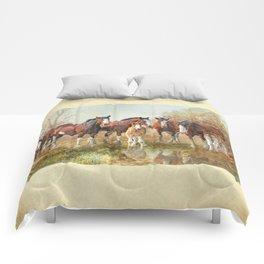 Yesterdays Reflection Comforters