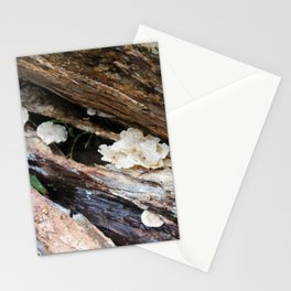 Where The Fairies Live Stationery Cards