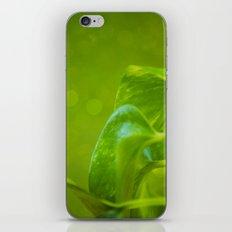 Verte iPhone & iPod Skin