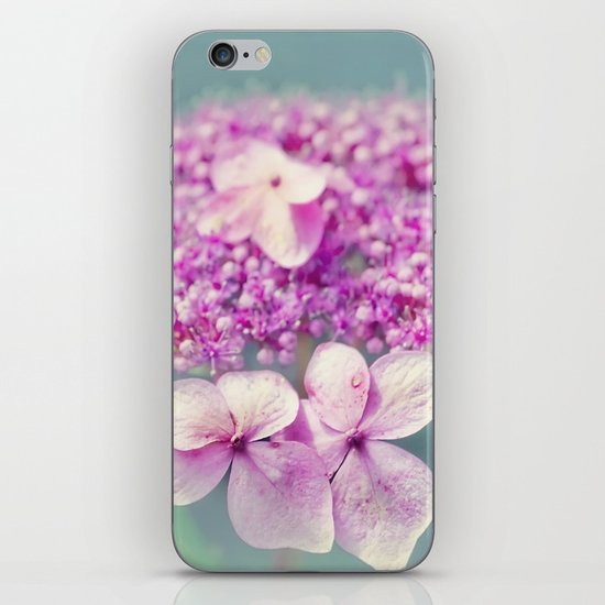 Sweet Summer iPhone & iPod Skin