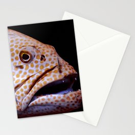 Coral Grouper Being Cleaned Stationery Cards