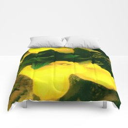 A TOUCH OF  CLASS Comforters