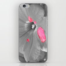 Drops of Pink iPhone & iPod Skin