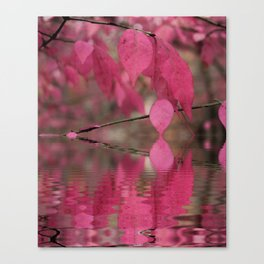 Red Autumn Leaf Reflections Canvas Print