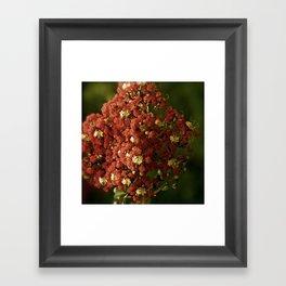 Christmas Crepe Tree Framed Art Print