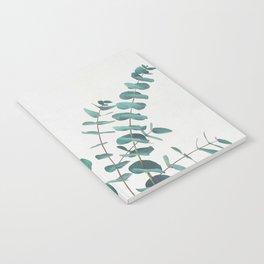 Eucalyptus II Notebook
