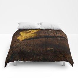 AEQUILIBRIUM Comforters