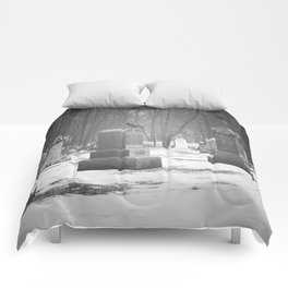 Vistits with the Crow Comforters