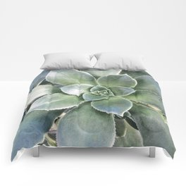 Succulent Photography | Nature | Green Cactus | Floral | Art Print Comforters